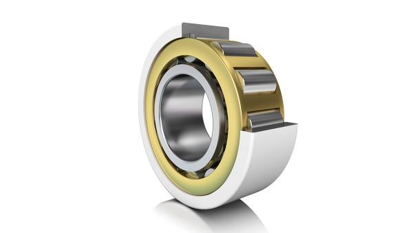 Roulement à rouleaux cylindriques isolé
