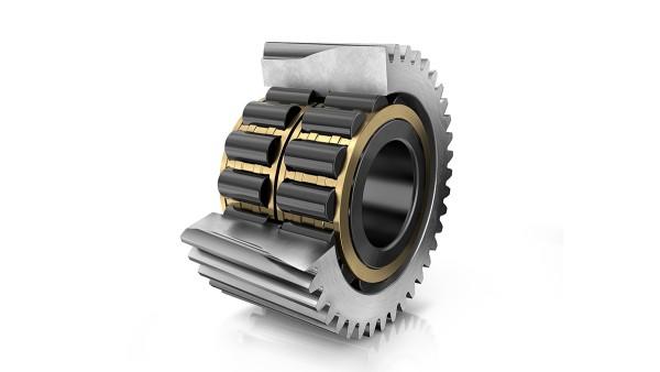 Roulement à rouleaux cylindriques High Capacity X-life FAG (palier direct)