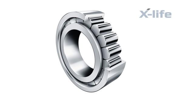 Roulements et paliers lisses Schaeffler: Roulements à rouleaux cylindriques jointifs