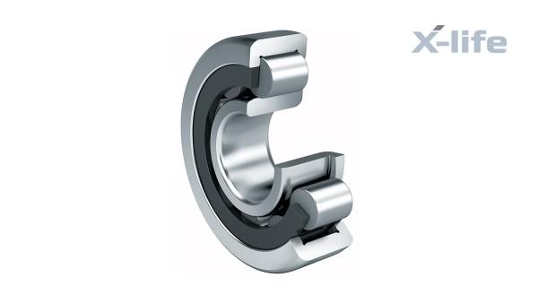 Roulements et paliers lisses Schaeffler: Roulements à rouleaux cylindriques avec cage