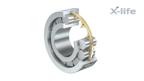 Roulements et paliers lisses Schaeffler: Roulements à rouleaux cylindriques à faible frottement