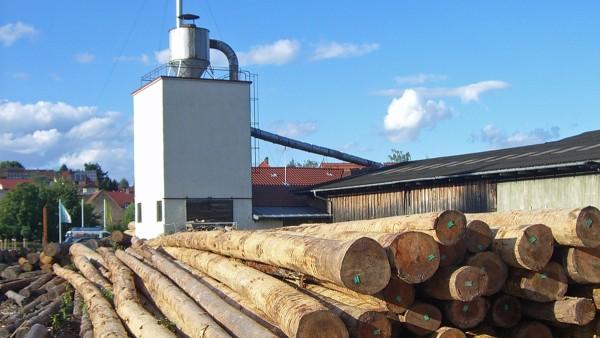 Vue extérieure de la scierie de bois de feuillus
