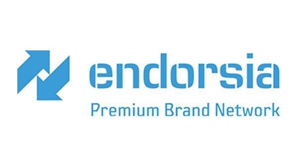 Démarrage de l'e-Business, INA est cofondateur des places de marchés SupplyOn, Endorsia et PTplace