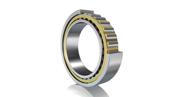 Roulement à rouleaux cylindriques FAG (palier libre)