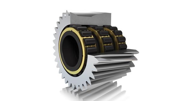 Roulement à rouleaux cylindriques FAG (palier direct)